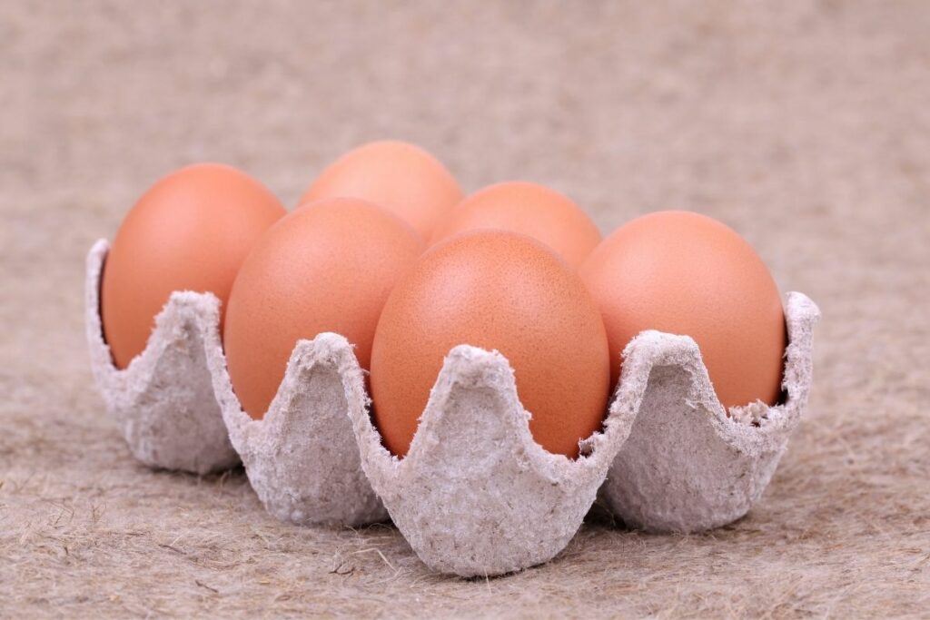 Are egg cartons recyclable